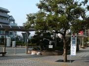 Nobori_sinobu001
